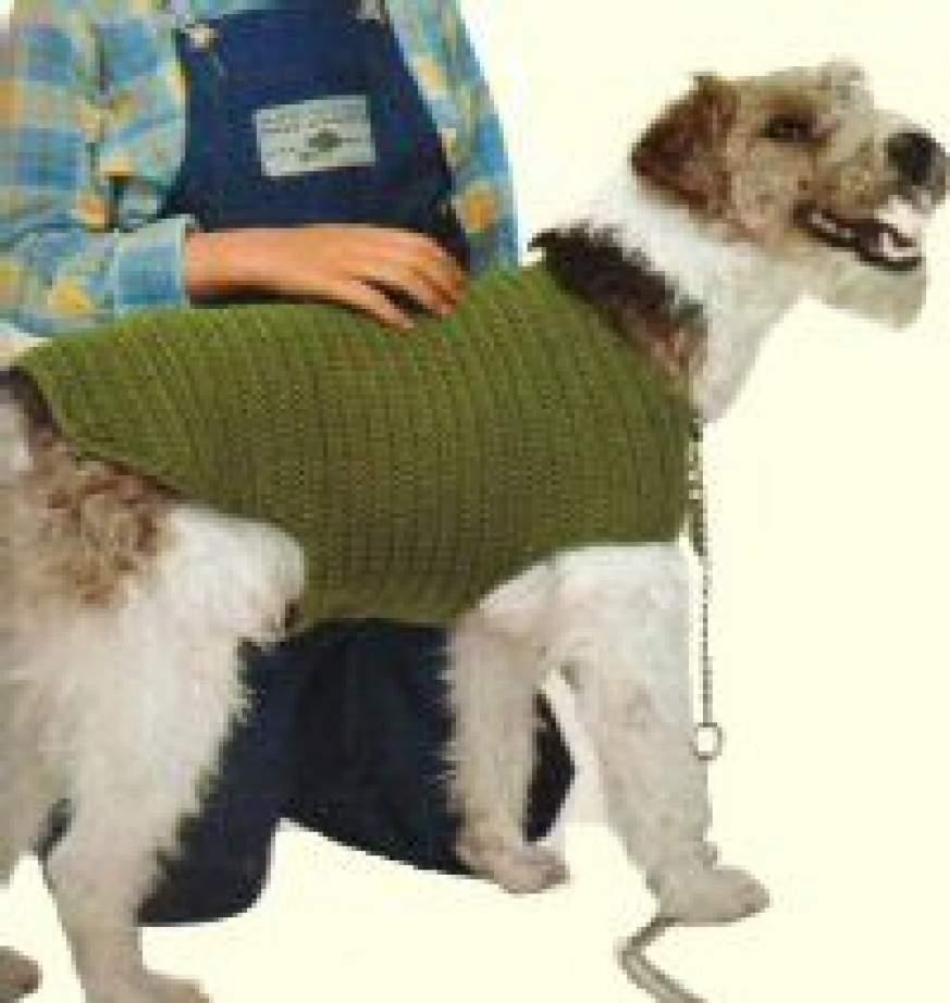 patron crochet manteau chien. Black Bedroom Furniture Sets. Home Design Ideas