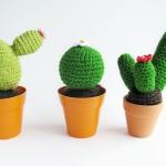 tuto crochet cactus