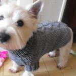 modele crochet manteau pour chien